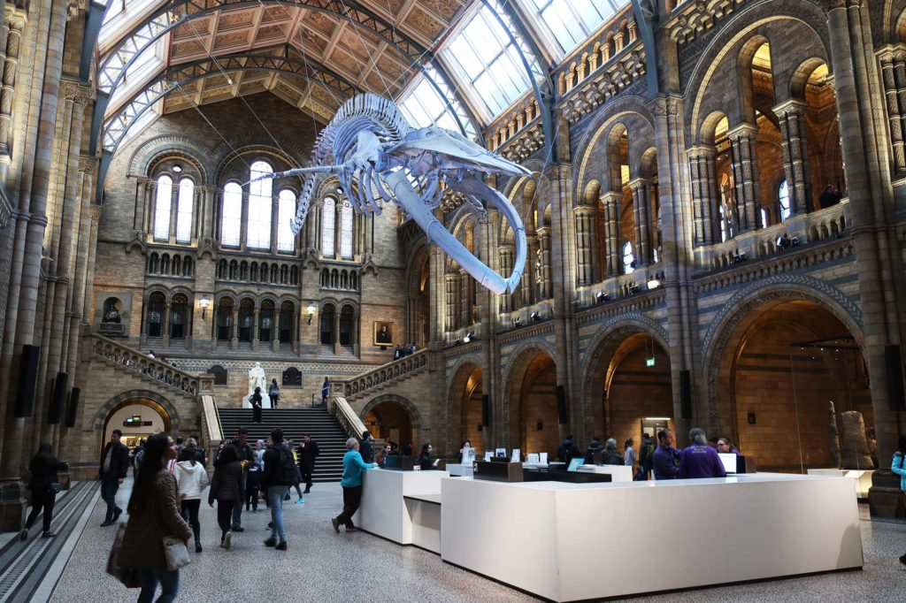 Natural History Museum in London, England
